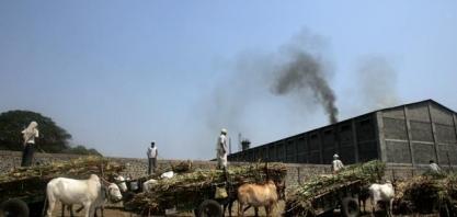 Usinas de açúcar da Índia antecipam fim da temporada por falta de cana