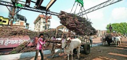 Açúcar/Índia: governo diz que não pretende reduzir tarifa de importação
