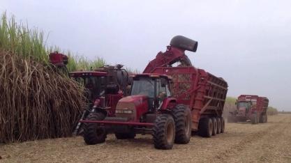 Tardou, mas a safra vira definitivamente ao etanol