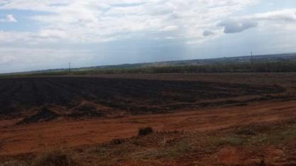 Usina sucroenergética de MS é multada em R$ 450 mil por incêndio em plantação de cana