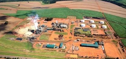 Instabilidade do etanol muda foco dos negócios na Bioenergética Aroeira