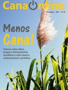 Edição 38 - Portal CanaOnline - Novembro 2016