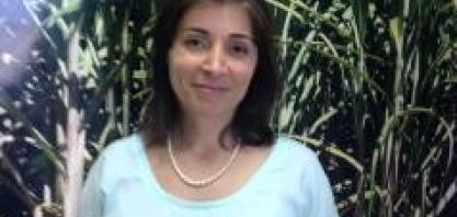 Cristiane Pigatto, gerente Financeira do Grupo São Martinho, no IV Cana Substantivo Feminino