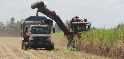 Safra da Agrocana Caiana, em Lençóis Paulista, contou com caminhão com direção autônoma