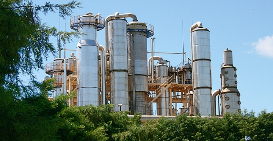 Pedra Agroindustrial contrata lubrificador campo e assistente controle tráfego agrícola