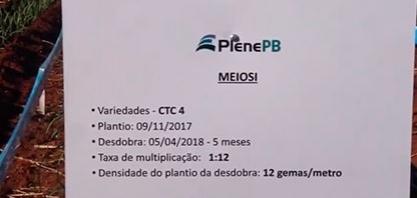 MEIOSI DE CTC4 COM PLENE PB ATINGE ALTAS TAXAS DE MULTIPLICAÇÃO