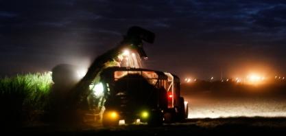 Oportunidades de Trabalho na Pedra Agroindustrial
