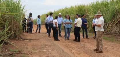 Representantes de entidades internacionais visitam produtores de cana e conferem a sustentabilidade na prática
