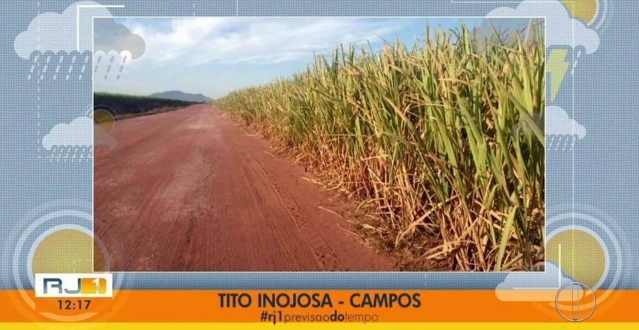 Falta de chuva prejudica produção de cana no Norte Fluminense