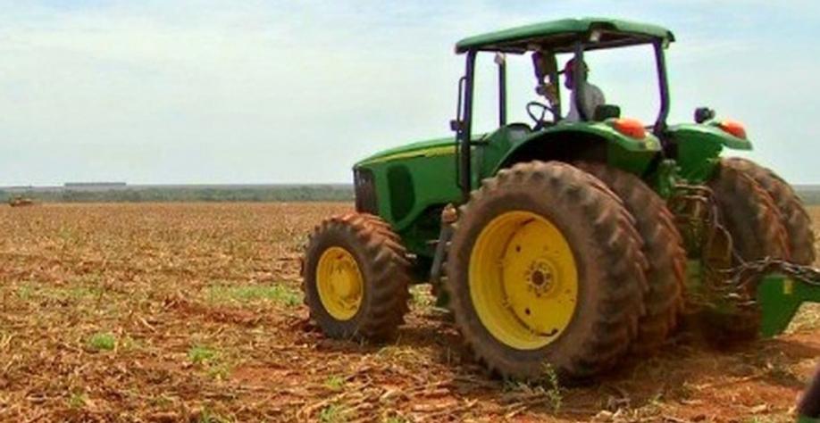 Safra da cana abre 700 vagas de trabalho em usina no noroeste paulista