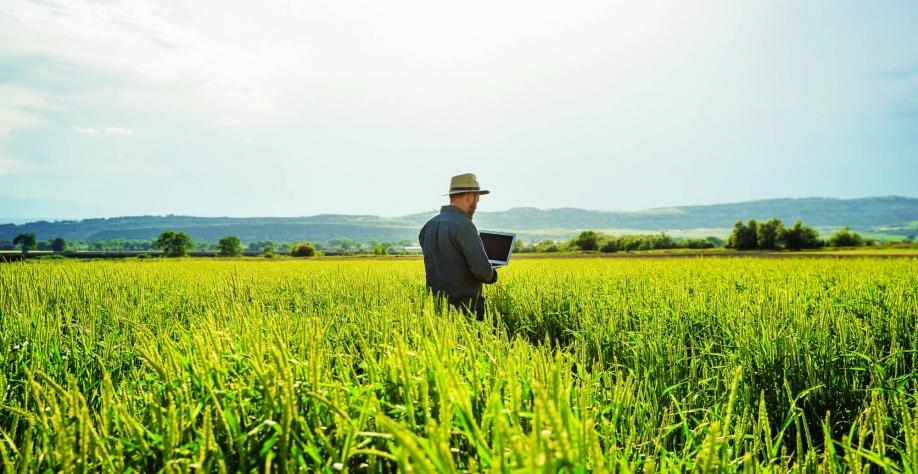 Revolução tecnológica transforma o campo no Brasil