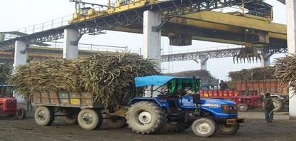 Açúcar: produção da Índia em 2018/19 atinge 11 mi de t até 31 de dezembro, alta de 6,72%