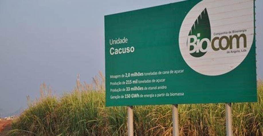Companhia de Bioenergia de Angola prevê produzir 100 mil toneladas de açúcar em 2019
