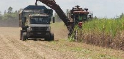 Inédito: test-drive com caminhão com direção autônoma no VIII Encontro Cana Substantivo Feminino