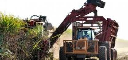 Banco MUFG busca grandes do agronegócio para crescer