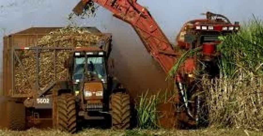 Anfavea: venda de máquinas agrícolas sobe 64,5% em janeiro ante igual mês de 2018
