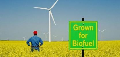 Análise avançada do mercado de biocombustíveis e taxa de crescimento impressionante até o período de previsão 2025