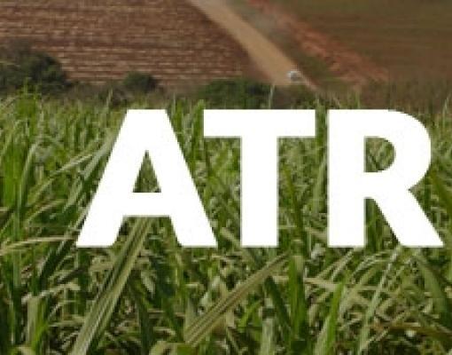 Paraíba: ATR líquido valoriza no mês de janeiro