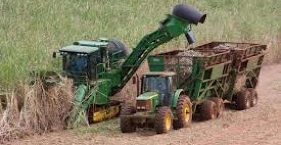 DREYFUS prevê troca mais rápida entre açúcar e etanol em usinas do brasil