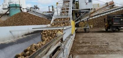 Dificuldades do setor açucareiro da UE indicam baixa exportação