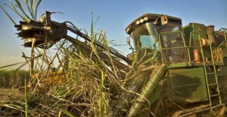 Consumo de etanol hidratado dispara em 2018 e tem recorde; gasolina perde mercado, diz Unica