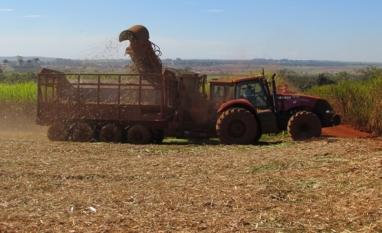 CTBE divulga 36ª edição do Boletim de Monitoramento da cana-de-açúcar em São Paulo e Goiás