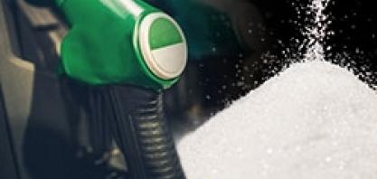 Açúcar recua nos mercados interno e externo; etanol mantém alta