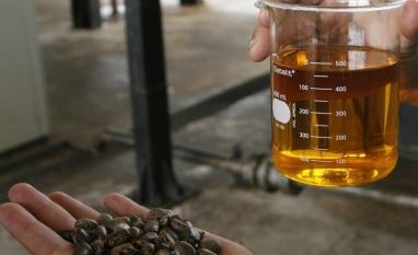 ANFAVEA diz recomendar que governo não aumente mistura de biodiesel para 15%