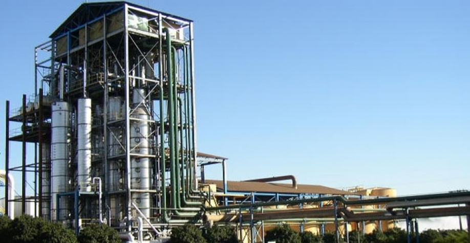Oito usinas de cana-de-açúcar seguem em atividade; moagem chega a 564,14 mi/t