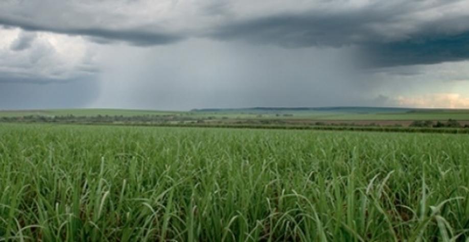 Meteorologia sugere mais etanol e preço maior do açúcar