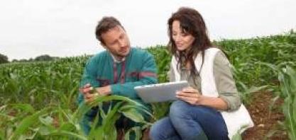 Cresce a procura por profissionais mais sêniores no agronegócio, detecta Michael Page