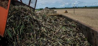 S&P Global Platts corta previsão de déficit de açúcar na safra 2019/20