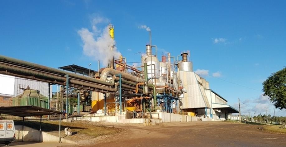 Usina Pindorama aposta na produção de etanol