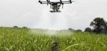 Manejo de variedades, irrigação e vantagens e desvantagens de drones e vants serão alguns temas Agronômicos do Fórum UDOP