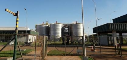 Produção de etanol em MT deve triplicar nos próximos 5 anos com instalação de novas usinas, estima setor