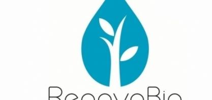 RenovaBio: ANP faz consulta pública sobre metas de descarbonização
