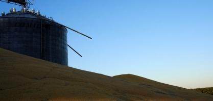 FS Bioenergia anuncia mais 3 usinas de etanol de milho em Mato Grosso