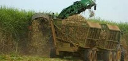 Preços do etanol disparam na usina por atrasos em colheita e forte demanda