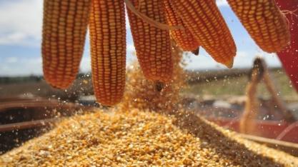 ´Novo imposto´ do agro vai gerar R$ 600 milhões aos cofres de MT