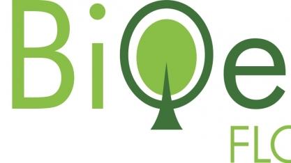 Projeto Bioeste apresenta resultados de pesquisas com eucaliptos para geração de energia