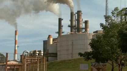 Etanol: produtividade é tema de reunião com Embrapa Agroenergia