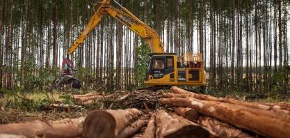 Suzano contrata operadores de colheita em Brasilândia (MS)