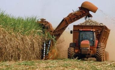 Canaplan vê aumento na produção de açúcar do CS para até 28 mi t