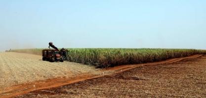 FCStone vê produção de açúcar do centro-sul brasil em 2019/20 em 27,8 mi t