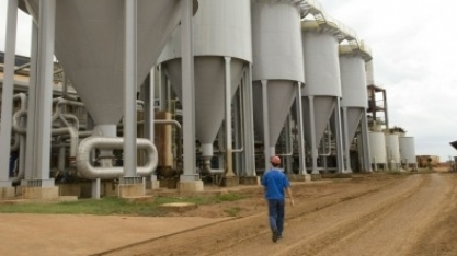 Bioenergia é opção para novo ciclo de desenvolvimento