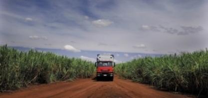 Atraso na moagem e crescimento nas vendas de etanol marcam início da safra 2019/2020