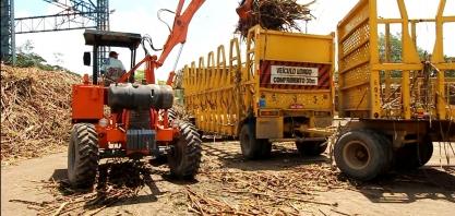 Safra de cana 2019/2020 pode chegar até 18 mil toneladas