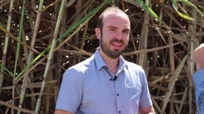 Fornecedores de cana apostam em crescimento na próxima safra