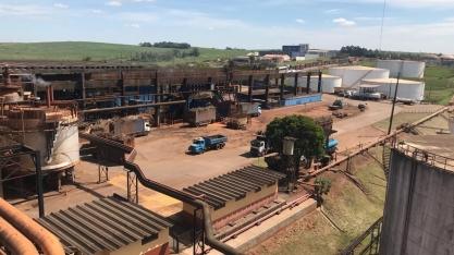 Colheita de cana avança no Paraná