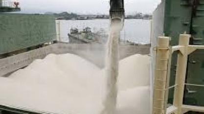 Açúcar sobe e petróleo cai. Apenas coincidência?